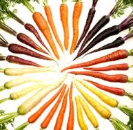 25/256px-carrots-of-many-colors-cutout.jpg