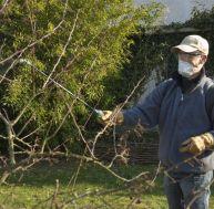 Adoptez des gants, un masque et une casquette lorsque vous jardinez - © C.Hochet / Les Brûlés