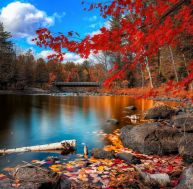 5 idées reçues sur l'automne