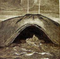 La baleine pèse le poids de 2 500 hommes