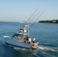 Pêche des poissons à rostre à la traine