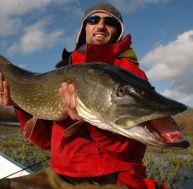 La pêche du brochet au poisson nageur