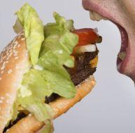 Quel lien entre obésité et alimentation ?