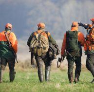 Peut-on chasser sans validation du permis de chasse ?