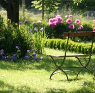 Entretien du jardin toute l'année