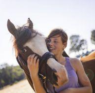 Les chevaux savent lire vos émotions