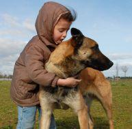 Faire cohabiter un chien et des enfants