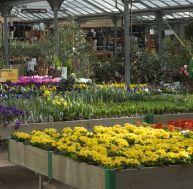 Composer son jardin en fonction des climats en france for Jardinerie correspondance