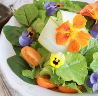 Cuisine conseils et astuces - Comment cuisiner les haricots verts ...
