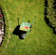 Am nagement du jardin nos conseils for Aide jardin conseil
