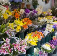 Comment devenir fleuriste ?
