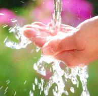 Des scientifiques considèrent qu'une personne dont l'apport en fruits et légumes est suffisant n'a pas à boire 2 litres d'eau par jour...