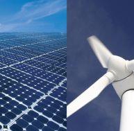 Ecologie et développement durable : quelle différence ?