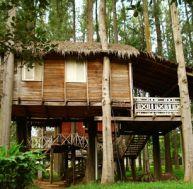 Les destinations d'écotourisme