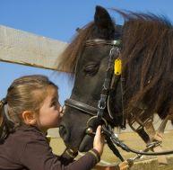 Initier ses enfants à l'équitation