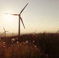 Déterminer la quantité d'énergie électrique produite par une éolienne
