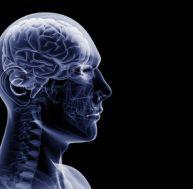 ep/epilepsies-identifier.jpg