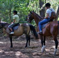 Pratiquer l'équitation en région parisienne