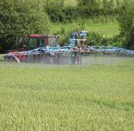 Pesticides: les éviter dans vos produits