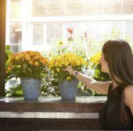 Jardin conseils fiches pratiques astuces for Astuce petit appartement