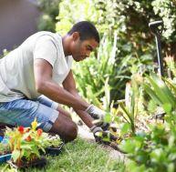 Devenir horticulteur
