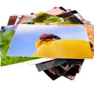 Développer ses photos grâce à internet