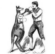 Au début du 20e siècle, des combats de boxe entre kangourous et hommes passionnaient les foules.