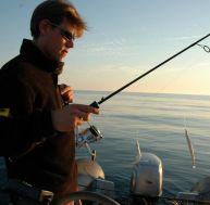 La pêche du bar au lançon