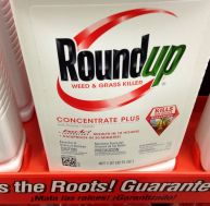 Le desherbant Roundup de Monsanto - copyright Mike Mozart / Flickr CC.