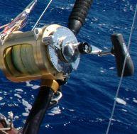 Choisir son moulinet pour la pêche en mer