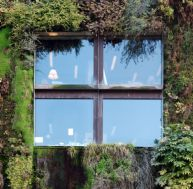Protégez votre façade avec un mur végétal