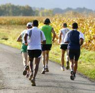 Les muscles à renforcer pour être performant en course à pied