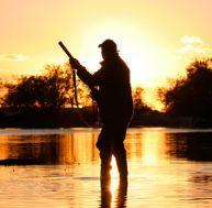 Quel est le coût du permis de chasse temporaire ?