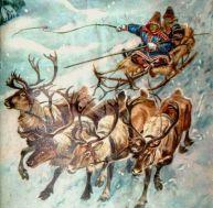 Attelage de rennes au début du 20ème siècle