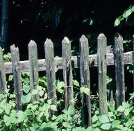 Rénover ses équipements de jardin