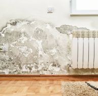 Rough luxe ou comment sublimer un mur ancien? / iStock.com - wabeno