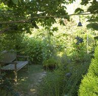 Que faire dans un jardin à l'ombre ?