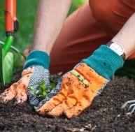 Se mettre au jardinage