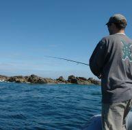 Choisir sa technique pour la pêche du bar