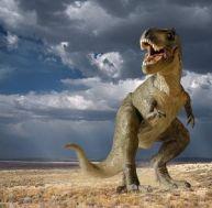 Tyrannosaures et autres dinosaures théropodes
