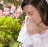 Les virus grippaux