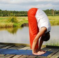 Les rudiments des cours de yoga