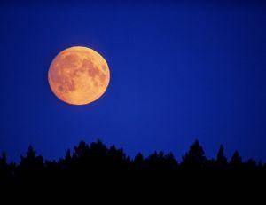 14 novembre : ne ratez pas la super lune, la plus grande du XXIe siècle !