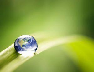 5 idées reçues sur l'écologie/ iStock.com - ThomasVogel