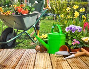 5 idées reçues sur le jardin / iStock.com -AlexRaths