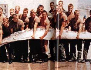 Un régalec d'environ 12 m capturé en 1996 dans les eaux du Pacifique par l'armée américaine
