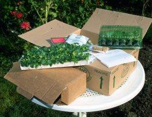 Conseils de jardinage for Catalogue de jardinage par correspondance