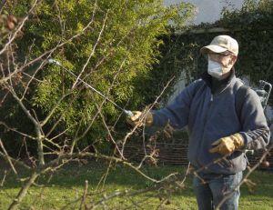 Bien choisir ses protections pour jardiner