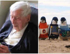 Alfred Date, 109 ans, tricote des pulls pour les manchots
