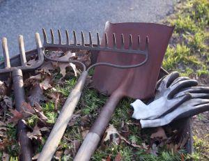 Aménagement de l'abri de jardin